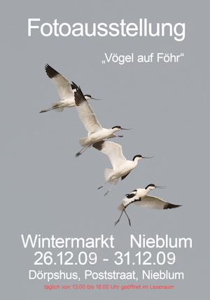 20080530-Wintermarkt Fotoausstellung 2009