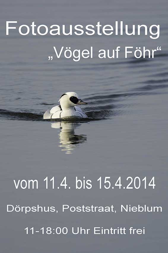 Fotoausstellung Ostern 2014