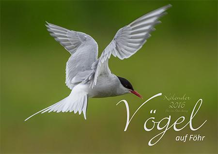 """Kalender 2016 """"Vögel auf Föhr"""""""
